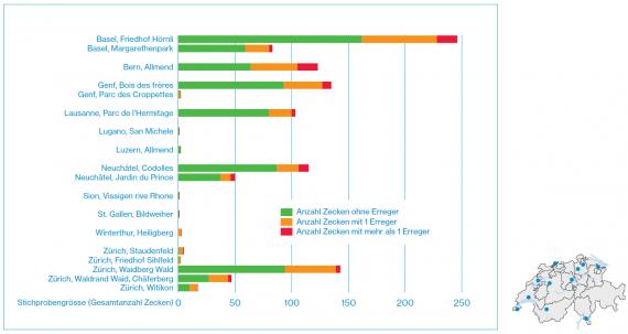 Grafik mit den Messdaten der Zecken und deren Krankheitserreger.