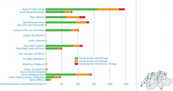 Grafico del numero di zecche raccolte e degli agenti patogeni da esse veicolati