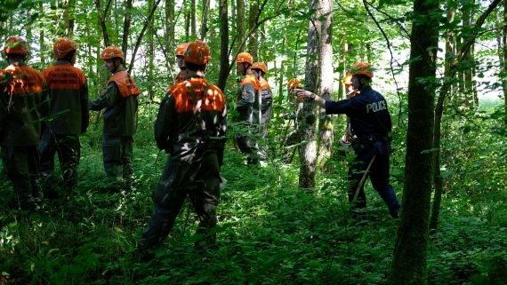 Übungsteilnehmer suchen im Wald nach vermissten Pfadfinder