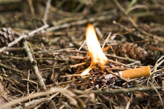 Eine angezündetete Zigarette auf trockenem Holz.