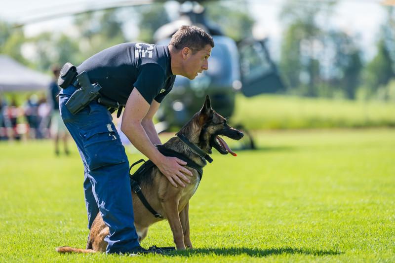 Das Bild zeigt einen Polizisten und einen Polizeihund auf einer Wiese. Der Polizist hält den Hund fest, kurz bevor dieser in den EInsatz losgelassen wird.